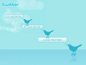 Who are your Twitter followers?